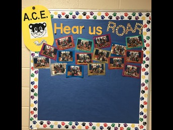 Bulletin Board for ACE Award Winners