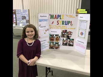 GES Science and Engineering Fair Wrap-Up