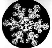 Snowflake Research