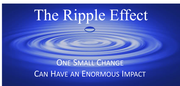 What is your SEL or RIPPLE effect?