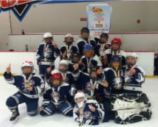 PJ Eisan's team wins gold medal in Ice Hockey