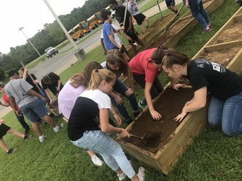 WHMS students seeded raised beds