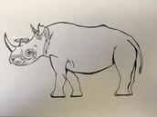 RIP Black Rhino
