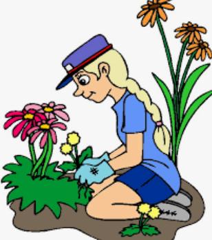 Looking for volunteers to help in our school garden