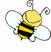 Why is a Spelling Bee Called a Bee?
