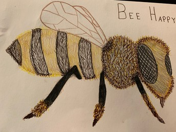 Drawing of a honey bee