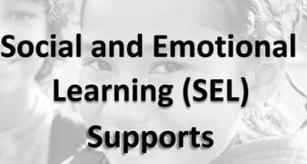 Social and Emotional Wellness