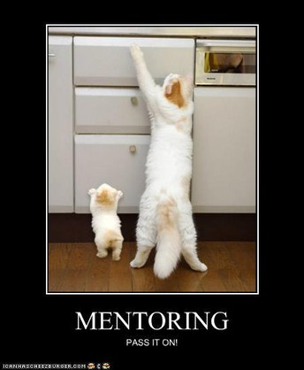Mentor/Mentee Time