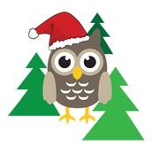 Elf Shelf - December 12 - 15