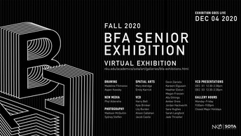 BFA Senior Virtual Exhibition