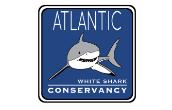 Student volunteers needed at Shark Center