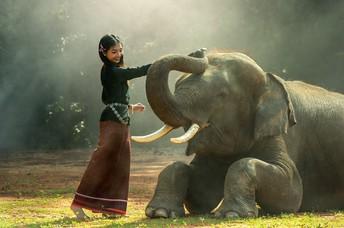 Impostor Syndrome: Washing the Elephant