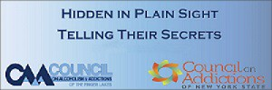 Hidden In Plain Sight Parent Information Seminar