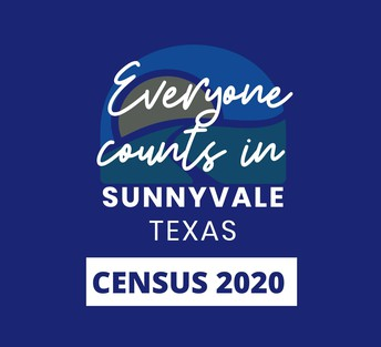 Census 2020 responses needed
