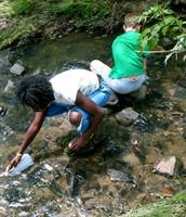 Exploring Ellerbe Creek