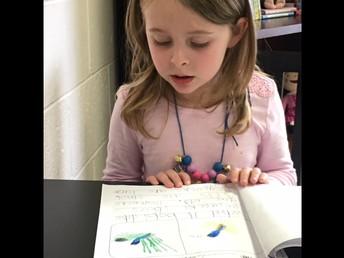 ADK - Weisheit -  Informational Writing