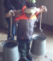 Carrying the Sap Buckets