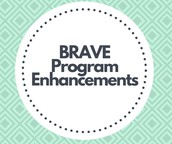 BRAVE Program Enhancements
