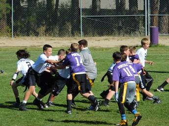 Flag Football Purple vs. White