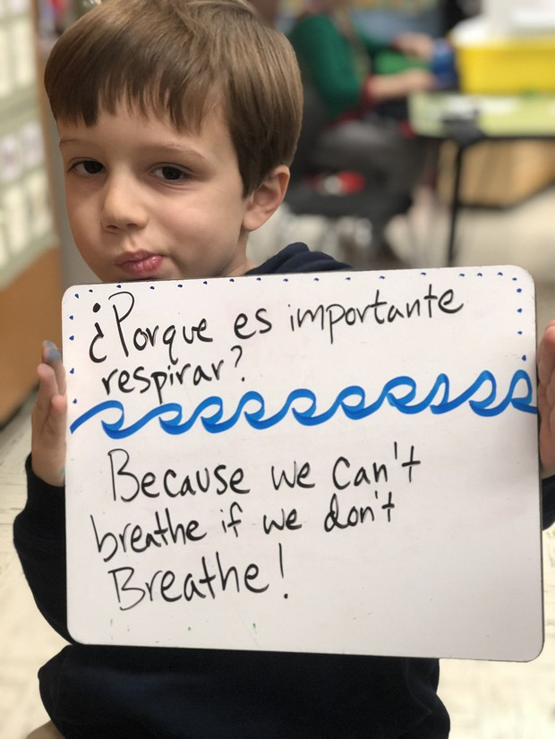 Mindfulness Newsletter | Smore Newsletters for Education