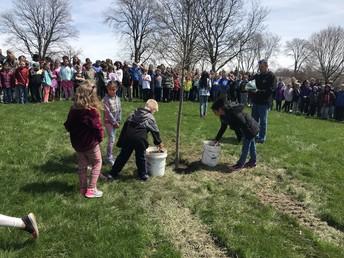 Ceremonial planting