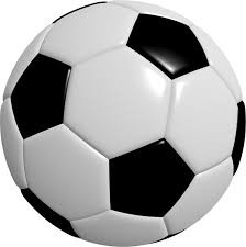 BOYS SOCCER ATHLETES RECEIVE TOP HONORS