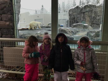 Polar Bear is out on a snowy day!
