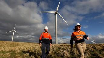 FEATURED CAREER OF THE WEEK:                                                     Wind Turbine Technician