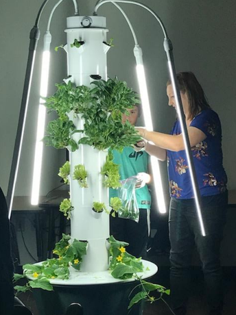 Tower Garden at Ryan