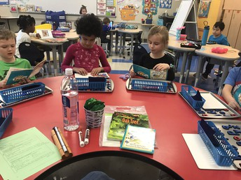 """Becoming the """"bosses"""" of our reading at the guided reading table!"""
