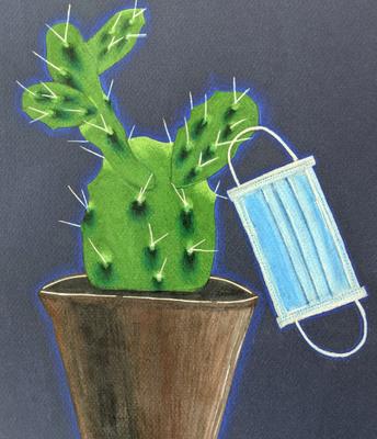 "Katherine Lowy ""Sanitary Succulent"""