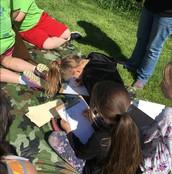 3rd Grade picnic