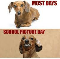 Spring Pictures....