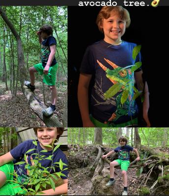 "Dalton's ""Giving Tree"" Pics"
