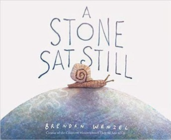 A Stone Sat Still Image and Read Aloud Link