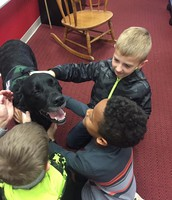 We love Goose, our therapy dog!