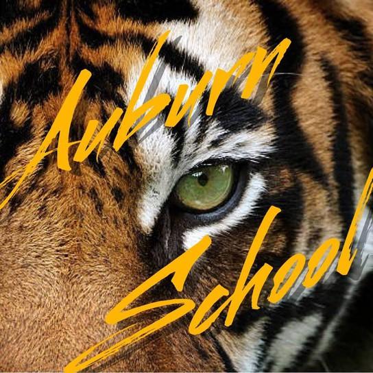 Auburn School profile pic