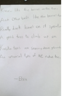 Elsie Matuku - Karaka tree poem