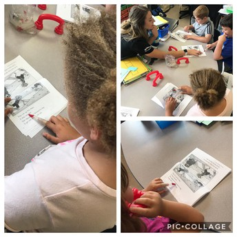2nd Grade Reading Groups