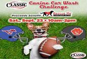 Canine Car Wash Challenge