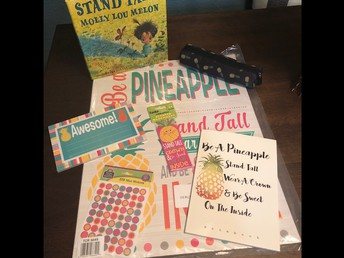 Pineapple Giveaway Package!!