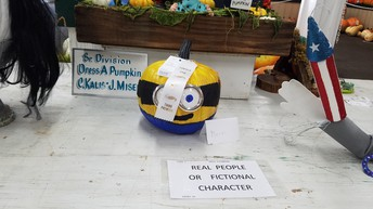 Minion Decorated Pumpkin