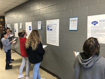 Text Structure Gallery Walk