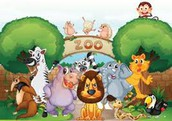 April 25 - 1st Grade Field Trip to the Zoo