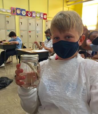 Bone & Vinegar Science Lab
