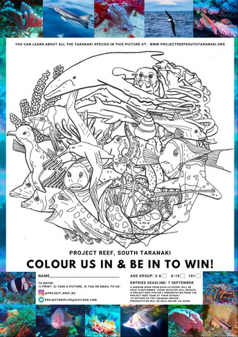 Project reef colouring in competition