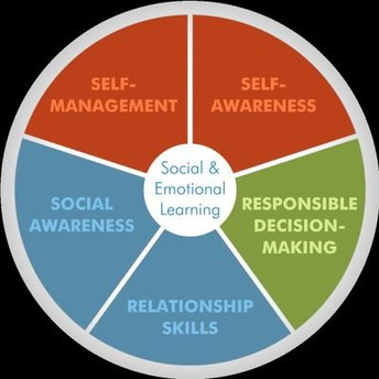 The Social-Emotional Learning (SEL)