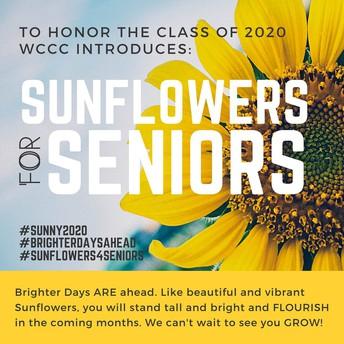 Sunflowers4Seniors
