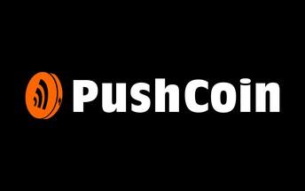 PushCoin Fees