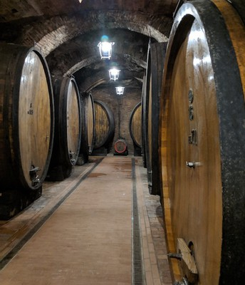 An Old Wine Cellar in Italy.